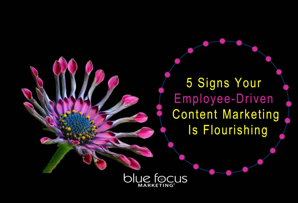employee-driven-content-marketing-is-flourishing